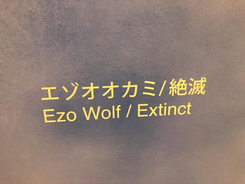 エゾオオカミ絶滅の表記