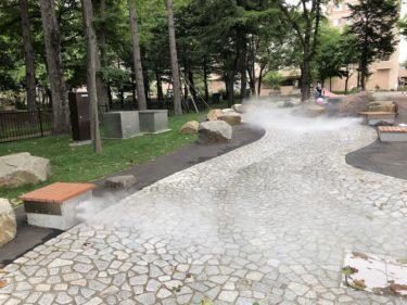 永山記念公園の優しい水路