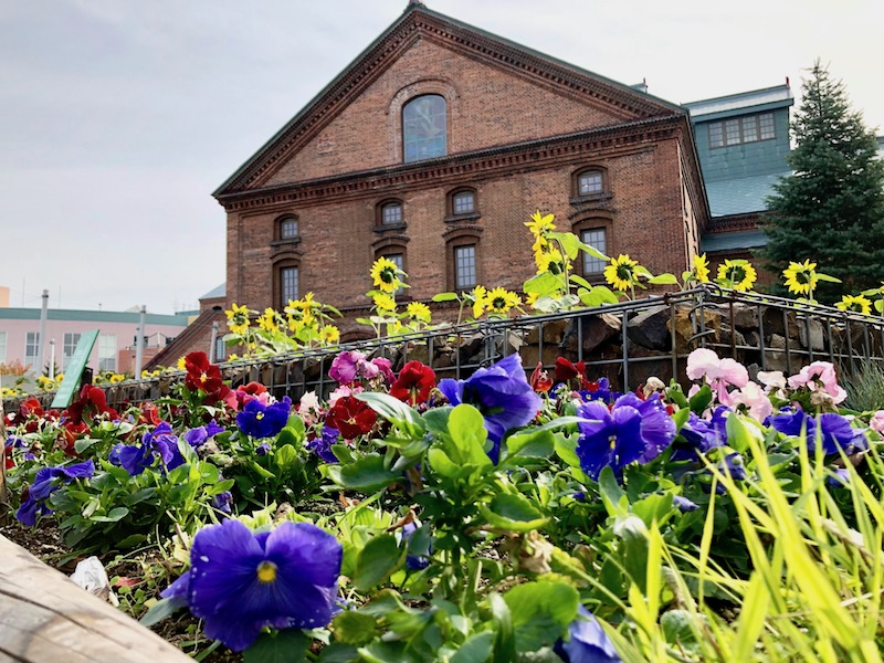 花が咲くサッポロガーデンパーク