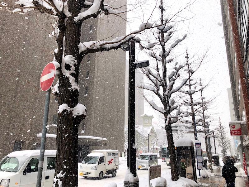 遠くに見える札幌時計台